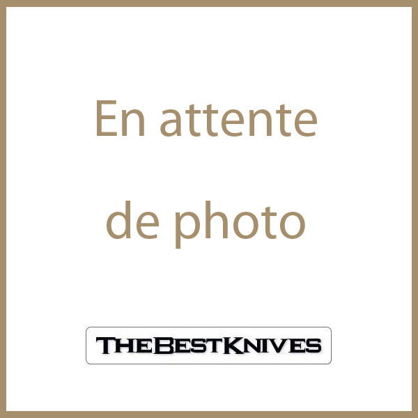 Couteau Kershaw Showtime A/O Lame Acier 8Cr13MoV Manche Acier KS1955 - Livraison Gratuite