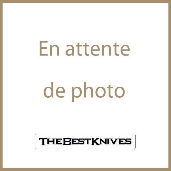 BTKT1810K Bestech Reticulan Damascus Blade Gray Multicolored Titanium Handle Framelock - Livraison Gratuite